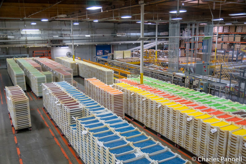 Jelly beans waiting to be packaged at the Jelly Belly factory