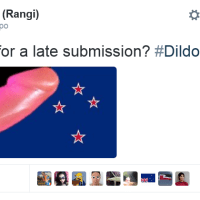 Happy Waitangi, Sorry About the Dildo to the Face. The Alternative Flag Burning and Nurse Butler