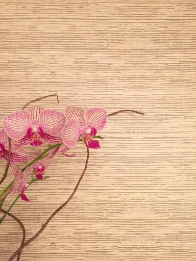"""Peel & Stick """"Grasscloth"""" Wallpaper (My Wayfair Video) - Emily A. Clark"""