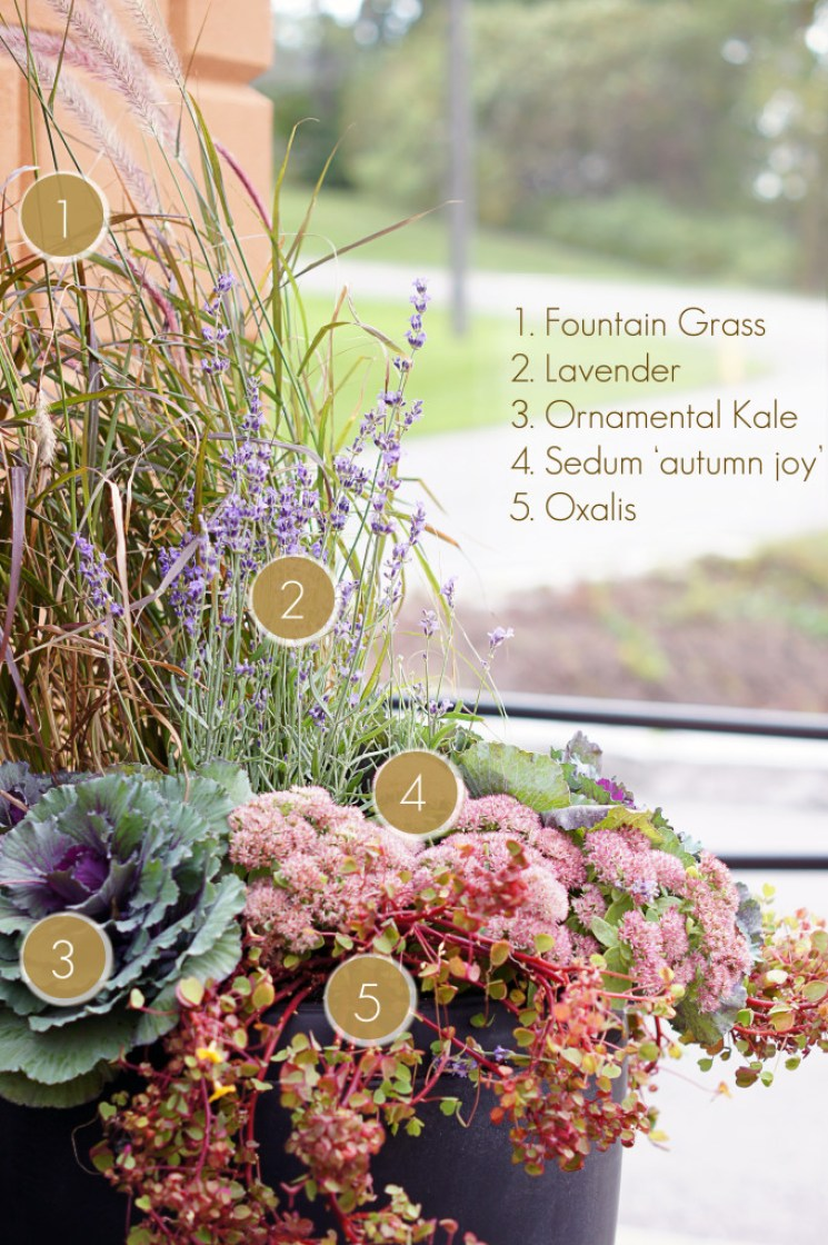 Outdoor Fall Planter Idea
