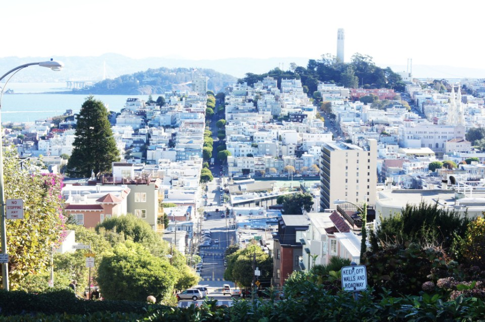 Lombard Street San Francisco Views