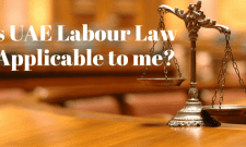 uae labour law in private sector