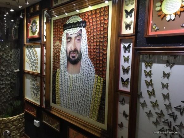 04-butterfly-garden-dubai-pictures-2015-emiratesdiary-004