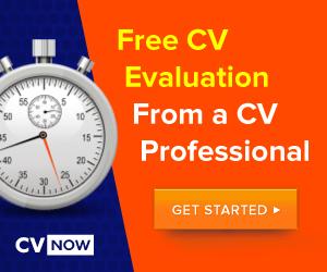 cvnow-job-search-guide-300x250