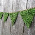 moss bunting