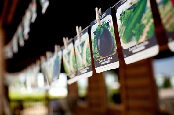 seed packet escort cards