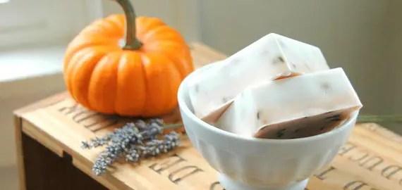 soap wedding favors pumpkin goats milk