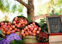 peaches favors