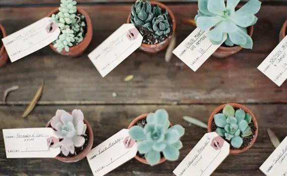 succulent place card favors