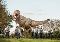 t-rex-chases-groomsmen-wedding-butler-photography-emmaline-bride