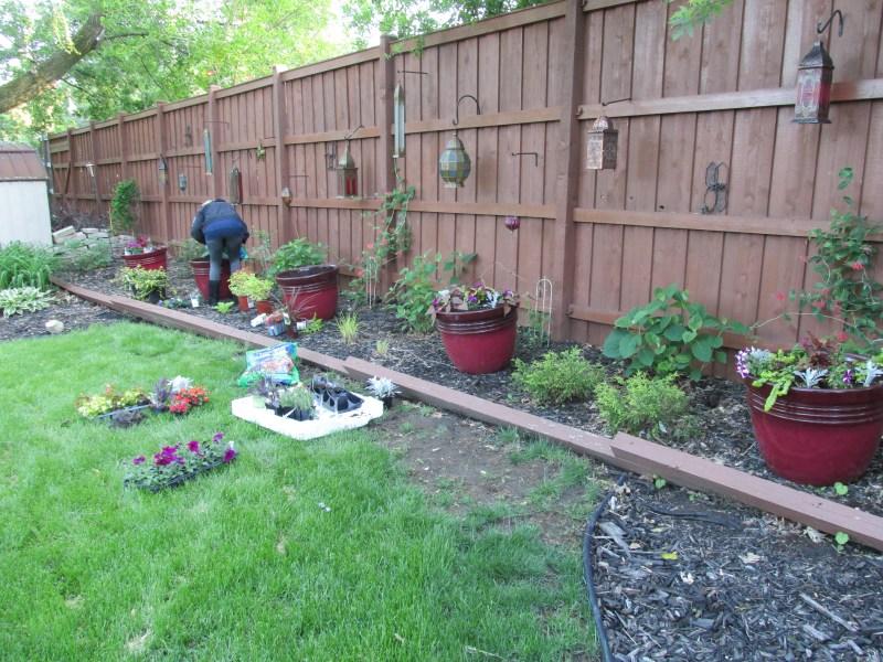 Large Of Home Depot Gardening Center Plants