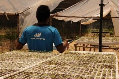 Emprendedores mexicanos lanzan una nueva moneda virtual: el Agrocoin