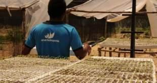 Amar Hidroponia lanza el Agrocoin