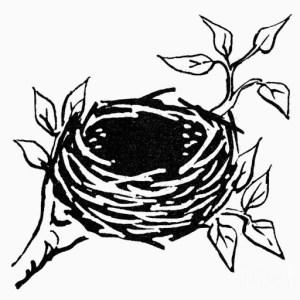 empty nest emotions