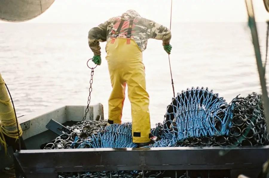 Sea Harvest - Gulf of Maine - Leica M2 + Kodak Portra 400