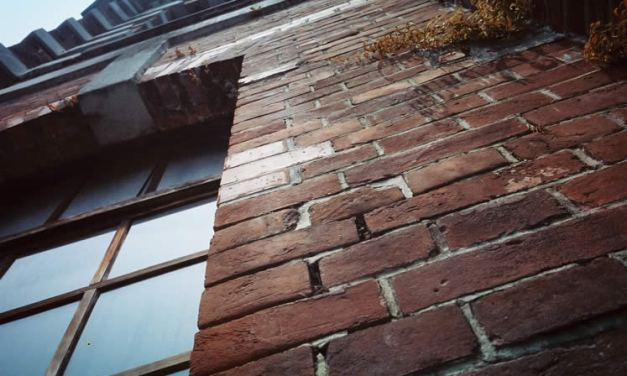 Redbrick – Kodak 250D 5207 (35mm)