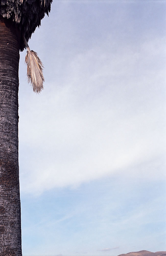 Untitled (Southern California), 2014 - from the series, The Western Lands