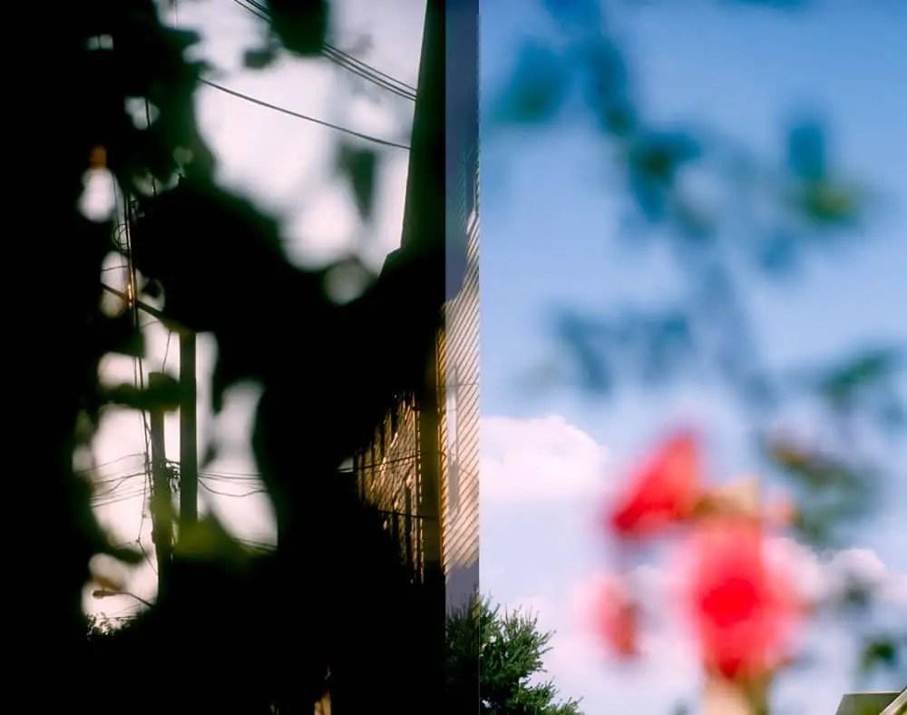 Untitled, Half-frame 35mm slide film. Olympus Pen FT
