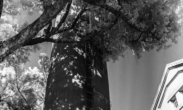 Stack – Rollei Infrared 400 (120)