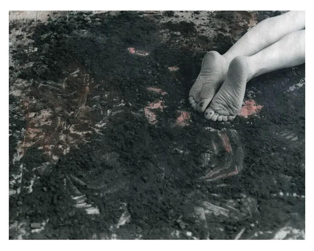 Corinne Perry - Wallflower