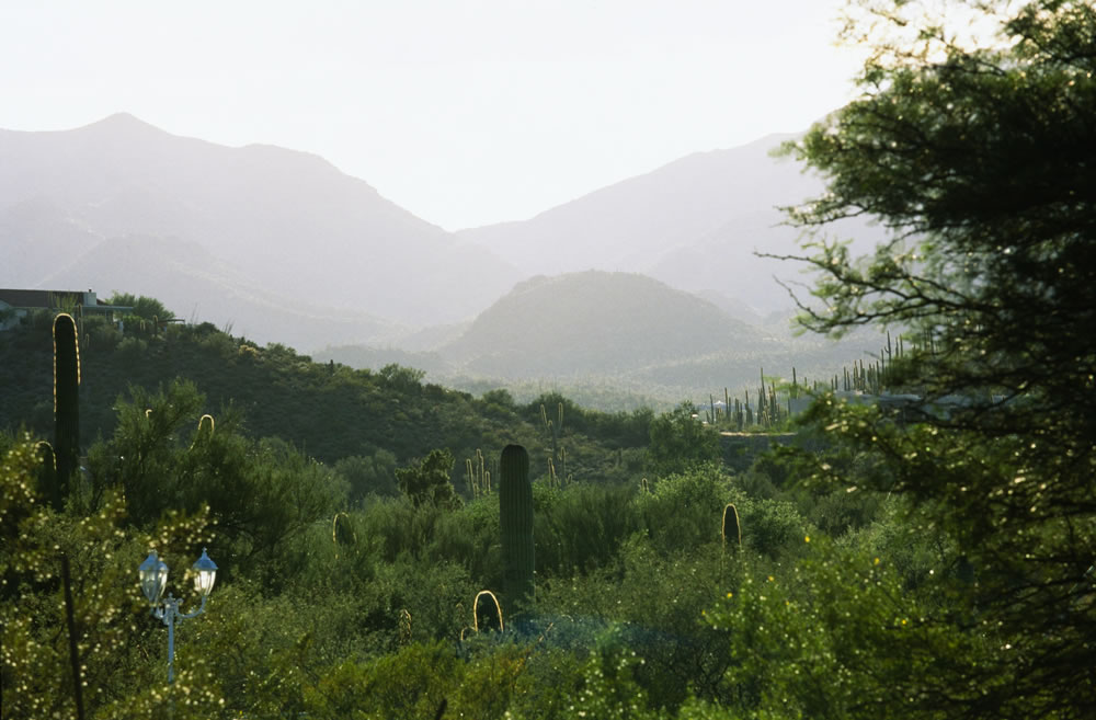 Evening in the Tucson Mountains, Canon Elan 7, 70-200mm f4L, Fuji Velvia 50