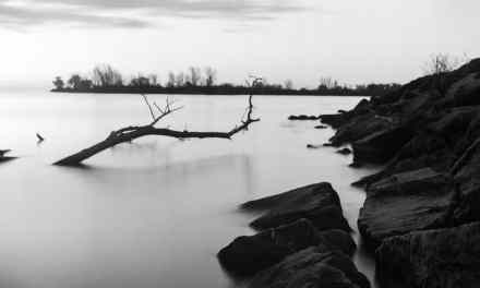Long exposure film tests part one: ILFORD PAN F+, ILFORD FP4+, ILFORD Delta 100 Professional