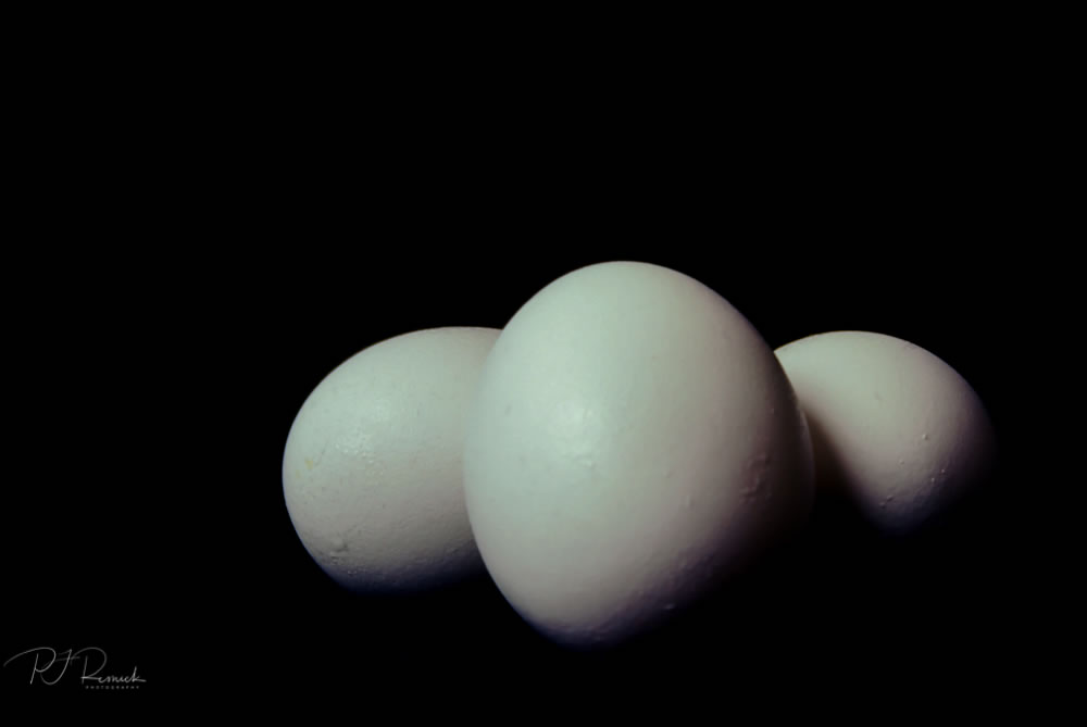 Kodachrome - Omelette