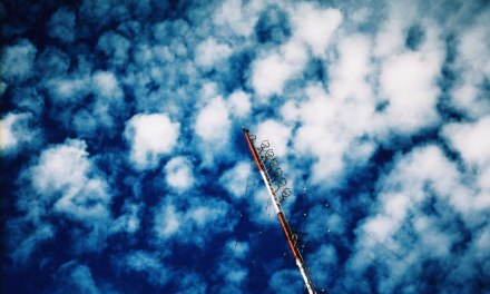 Half (a) mast – Kodak PROFESSIONAL ELITE Chrome 100 – EB-3 (35mm)