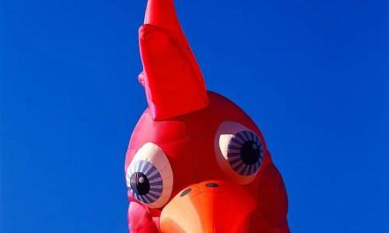 #ChickenAF – Kodak EKTACHROME 100VS – E100VS (120)