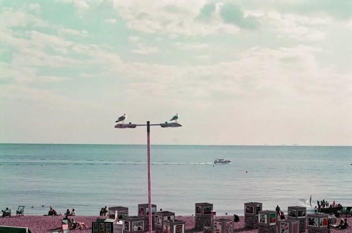 5 Frames 03 - Sandeep Sumal - Lomography new Lomochrome Purple XR 100-400 - Nikon F6 01