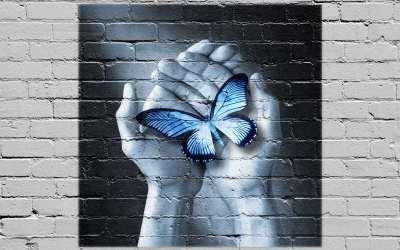 τοίχος πεταλούδα ελευθερία συναισθήματα