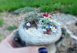 Ideal Miniature Fairy Garden Urn Miniature Micro Micro Fairy Garden Enchanted Acorn Fairy Gardens Miniature Gifts Micro Mini Fairy Garden Houses Micro Mini Fairy Garden Furniture