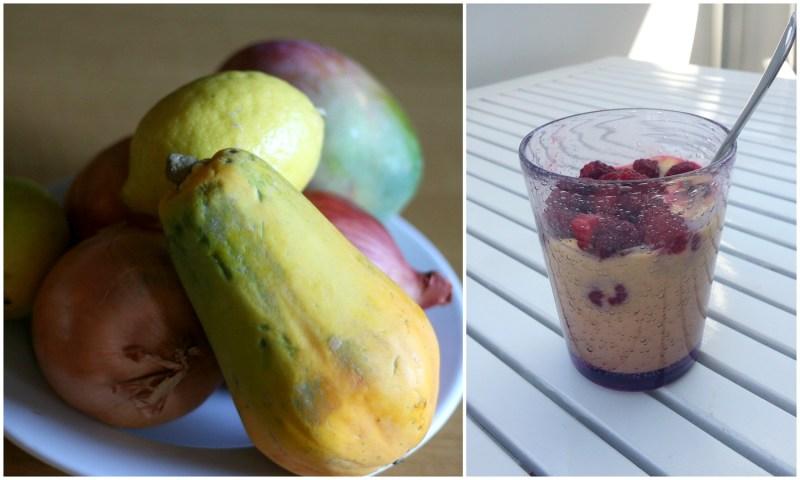 mellanmålstips yoghurt med mango och hallon