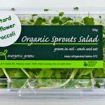 salad-50g