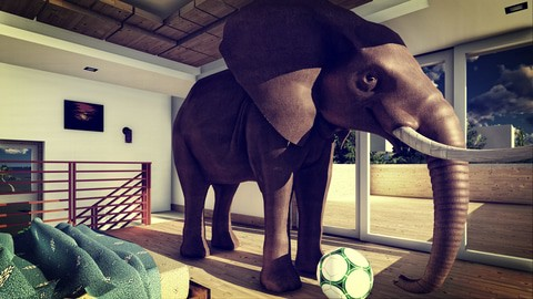 Spiritual bypass leaves the elephant in the room
