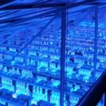 blockchain-tag-energiewelt