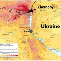 Scientists find the effects of radiation cause birds in Chernobyl's most affected areas to sing more