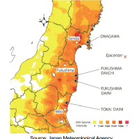 Industry paper investigates why other plants were not affected like Fukushima Daiichi