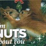 Blog_I'm nuts about you
