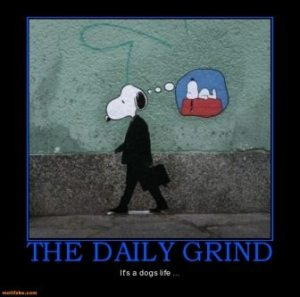 Blog_daily-grind