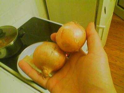 zwei zwiebeln