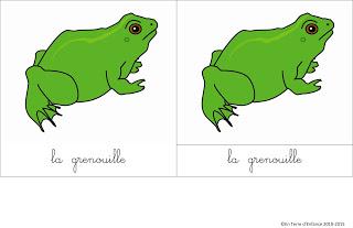 Lagrenouille-1