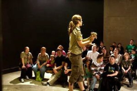 reptilia-shows-tours