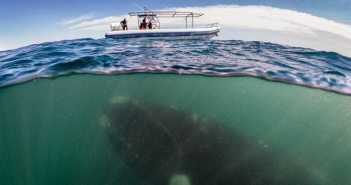 13-pics-of-water-depths-that-will-give-you-shivers-down-the-spine