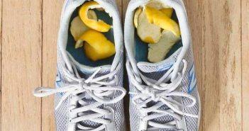lemons-8
