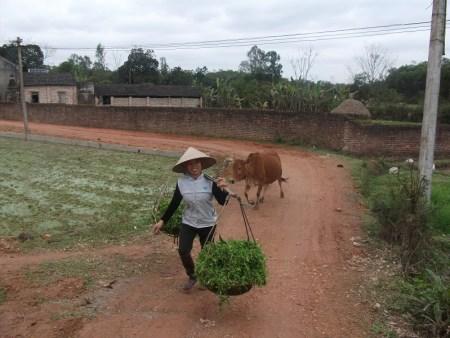 humaitaire-au-vietnam-sourire