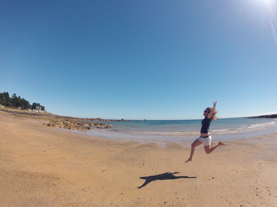 tasmanie--happy