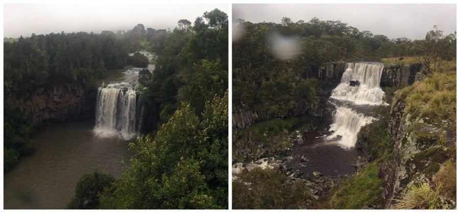dorrigo-ebor-falls-nsw
