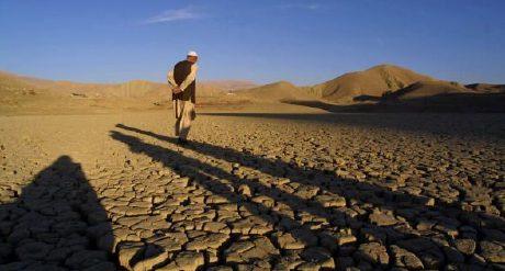 environmental problems in pak by baseerat taseer