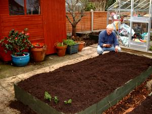 compost-raisedbed